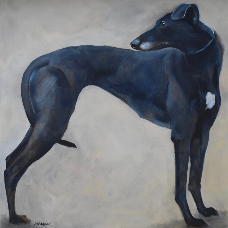 Neil Helyard Sighthound