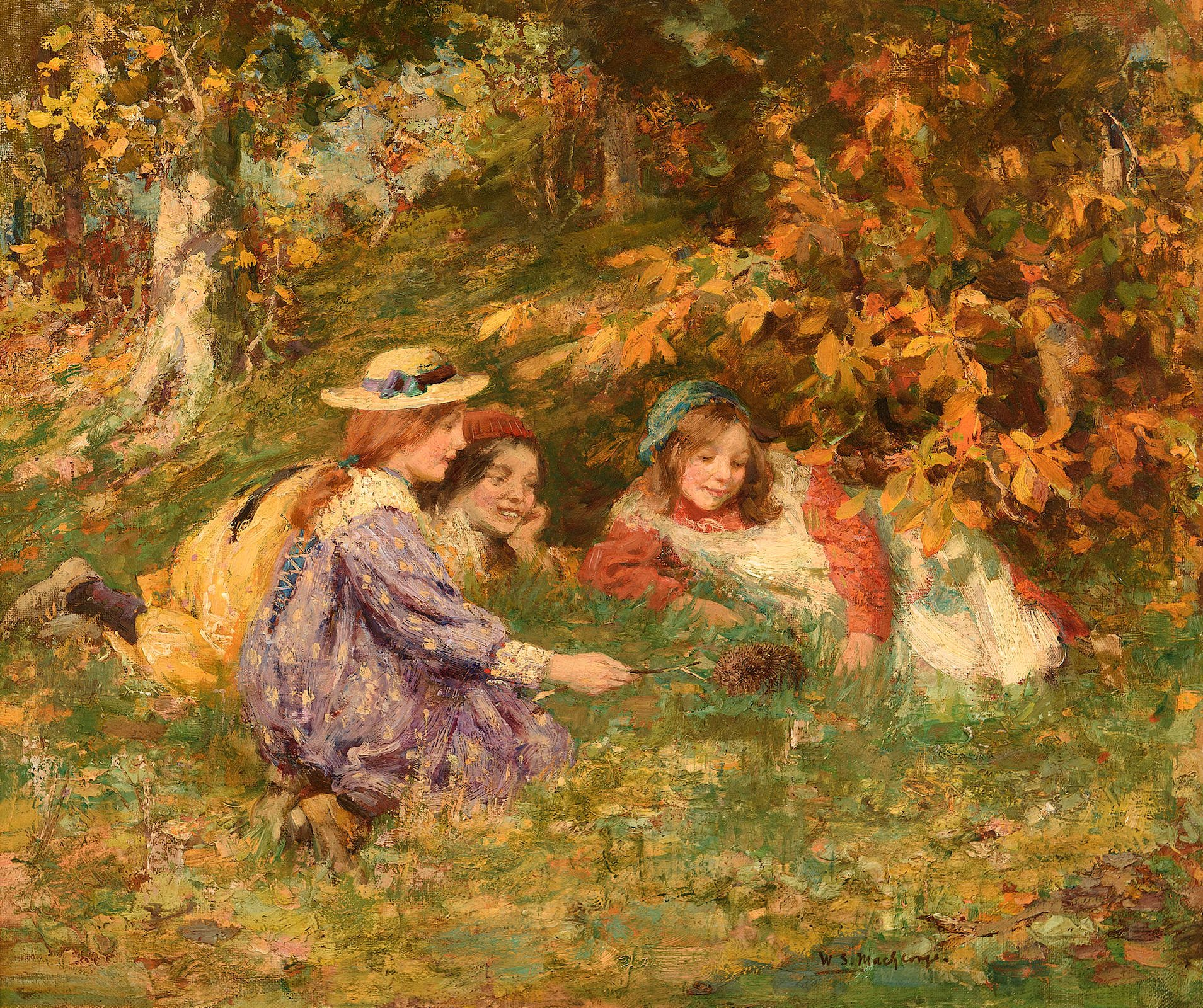 three young girls in woodland by hedgehog in the grass