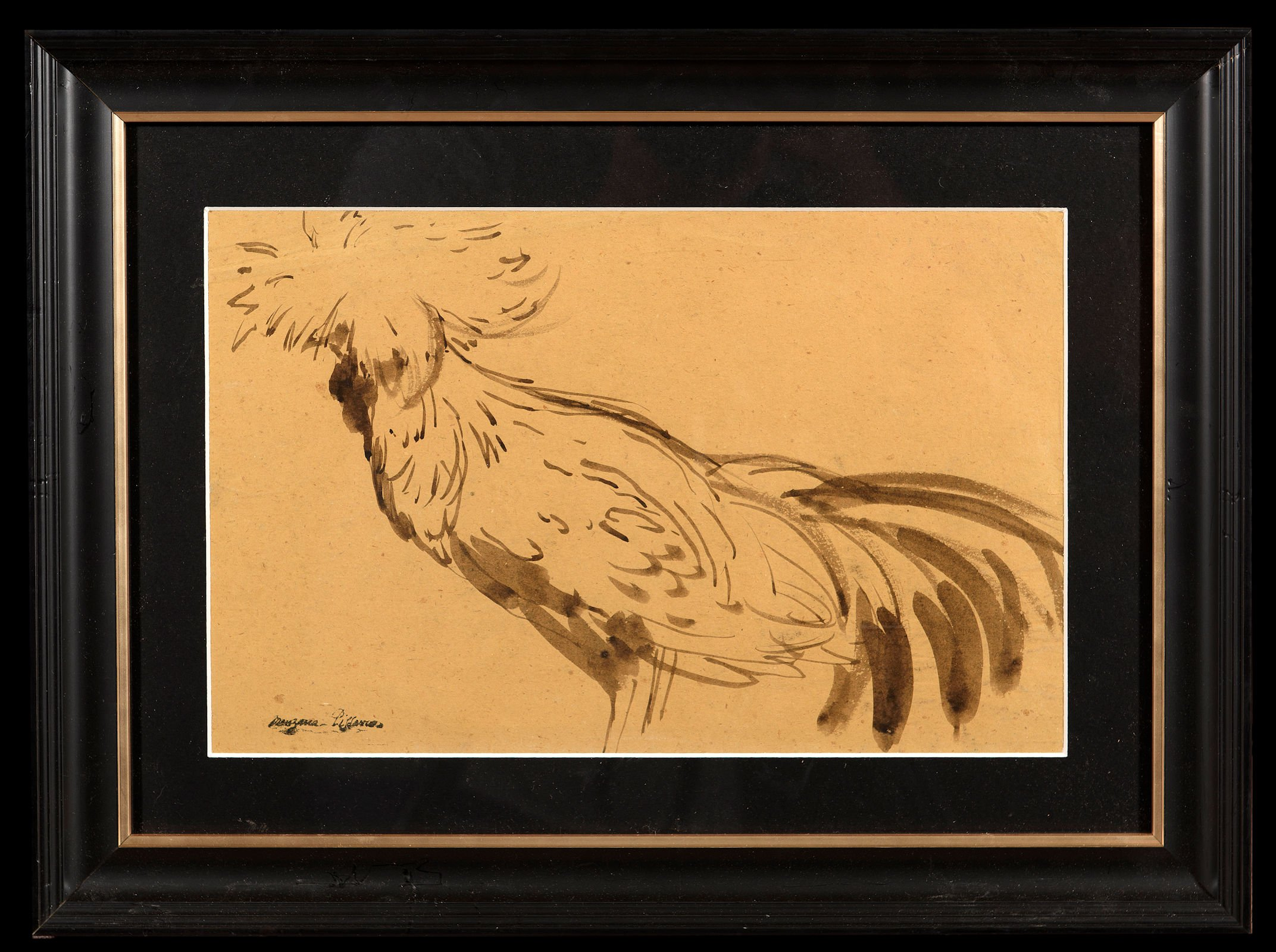 Chicken drawing from side view